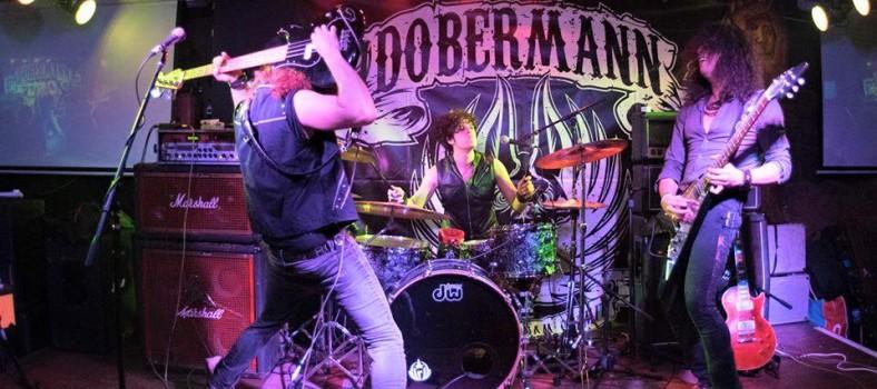 dobermann 1