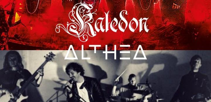 althea kaledon bresso 2018